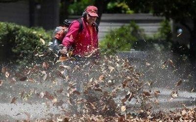 gas-powered leaf blowers in Saanich